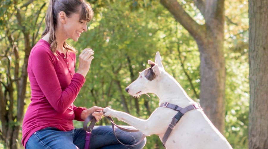 Episode 1: Dog Expert Victoria Stilwell