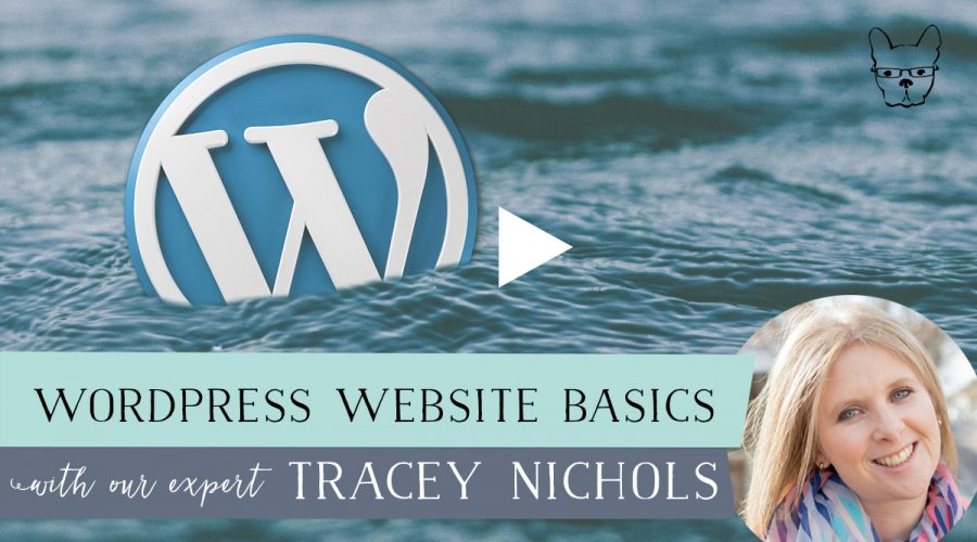 WordPress Website Basics