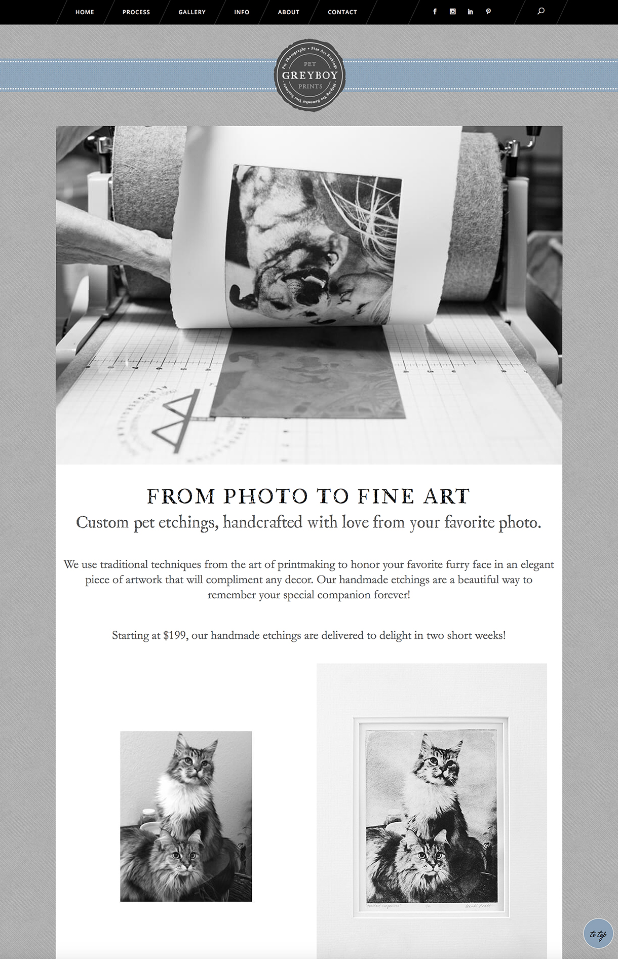 Pet Photography Profit Bootcamp - working with dog -