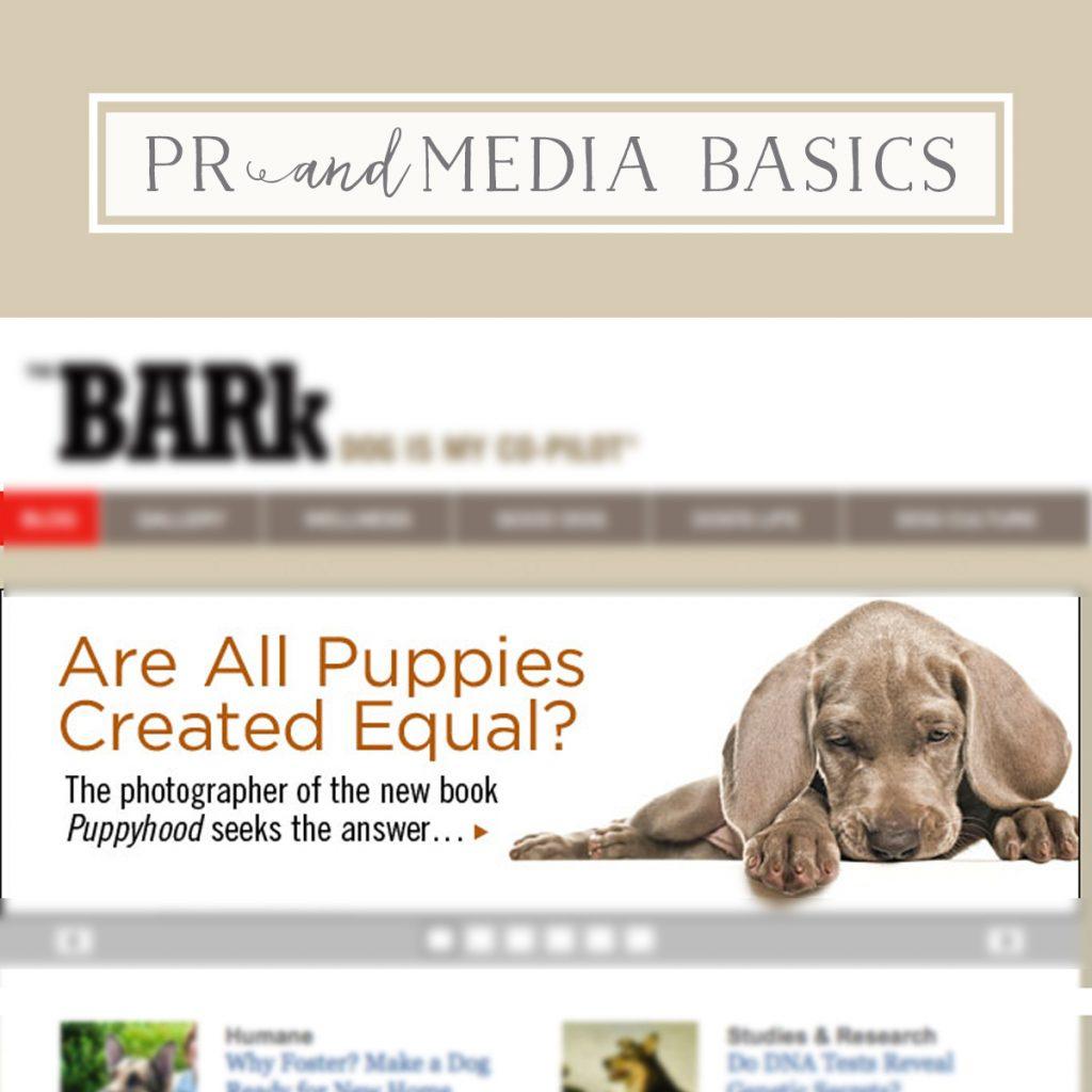 PR & Media Basics Masterchat