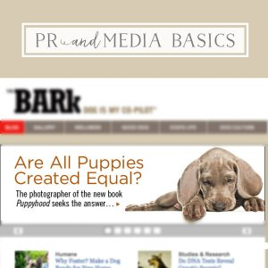 Pet Business PR & Media Basics Masterchat