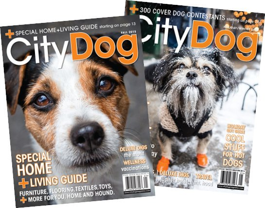 citydog_covers