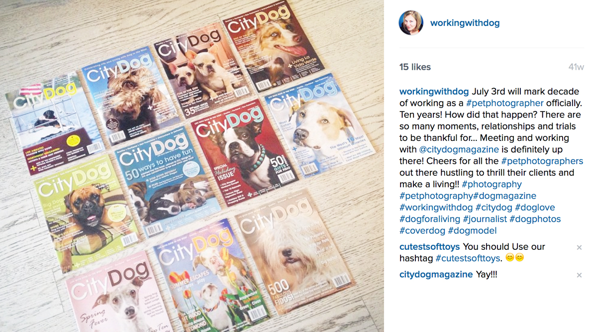 citydog_jnicholesmith_covers