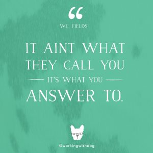 quote_FIELDS_call-you