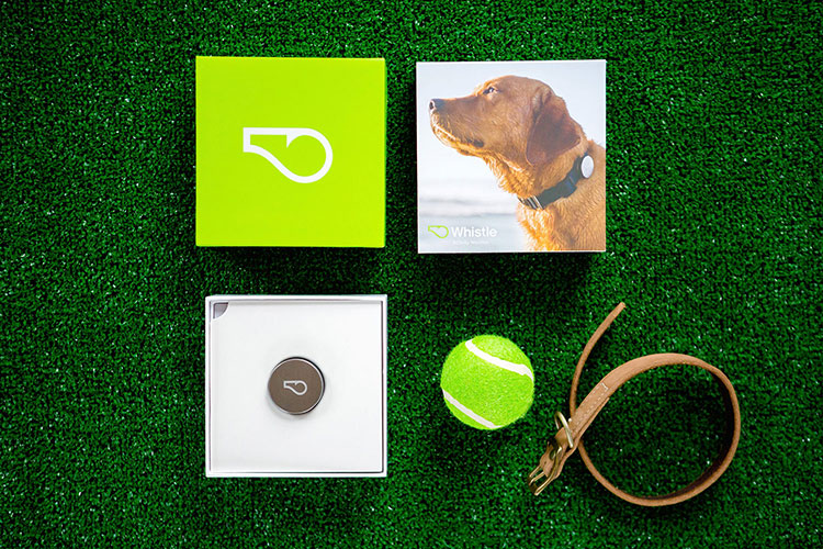 whistle dog activity tracker packaging by Design Womb