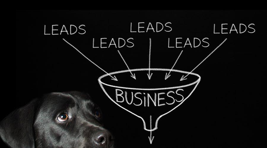Content Marketing Basics: Part 2