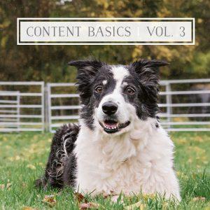 Content Marketing Basics: Part 3