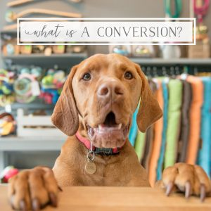 What is a Conversion & How do I Get More of Them?