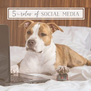 Social Media Roles for Dog Businesses