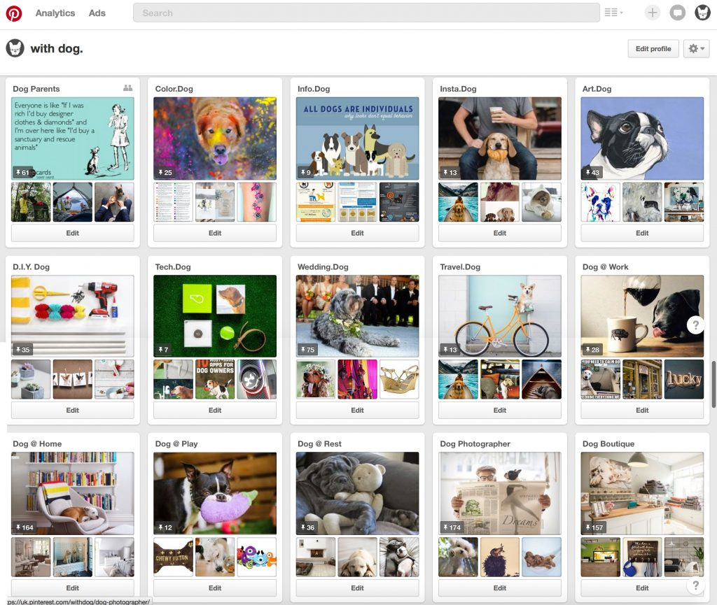 Working with Dog on Pinterest