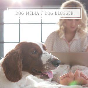 Dog Media Dog Blogger