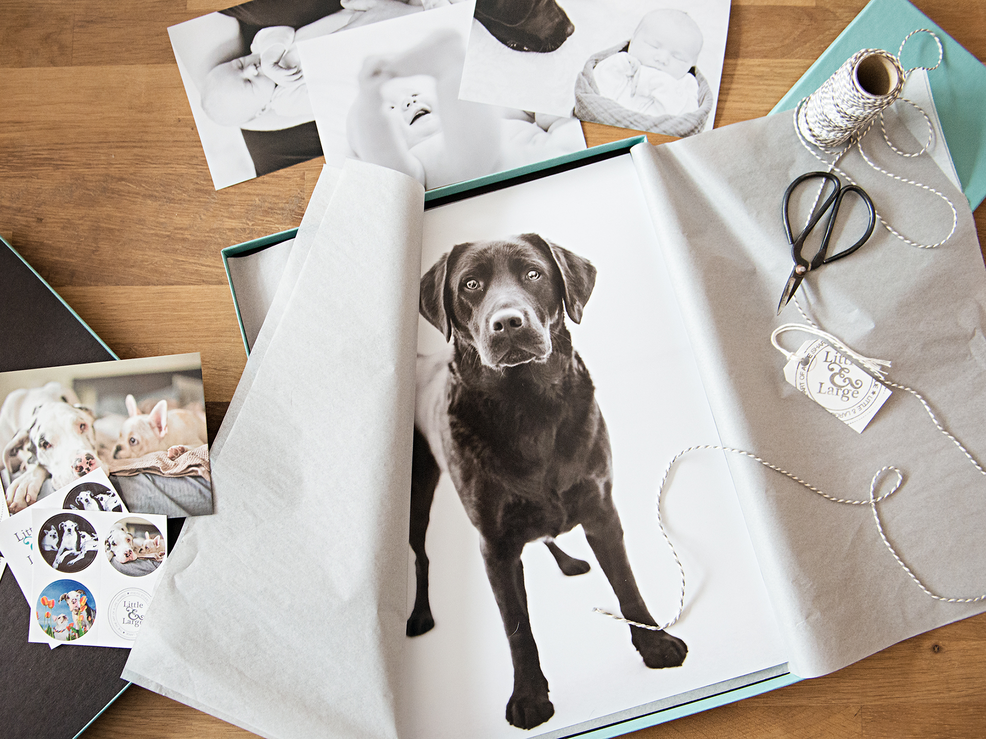 Pet Photography products, prints and packaging