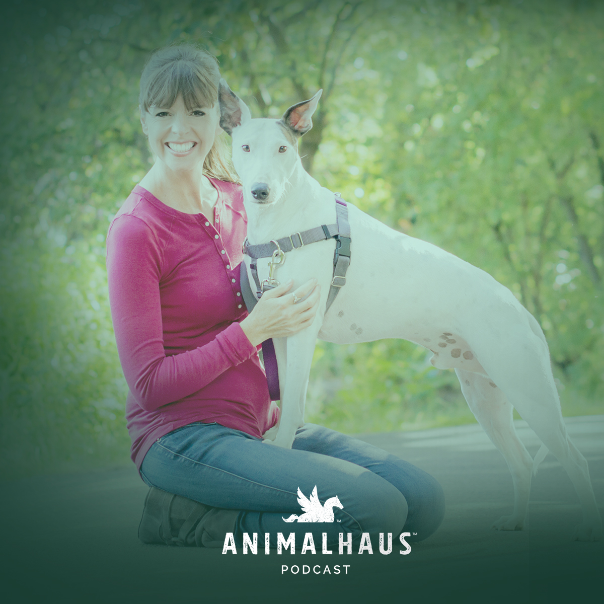 Victoria Stilwell on the Animalhaus podcast