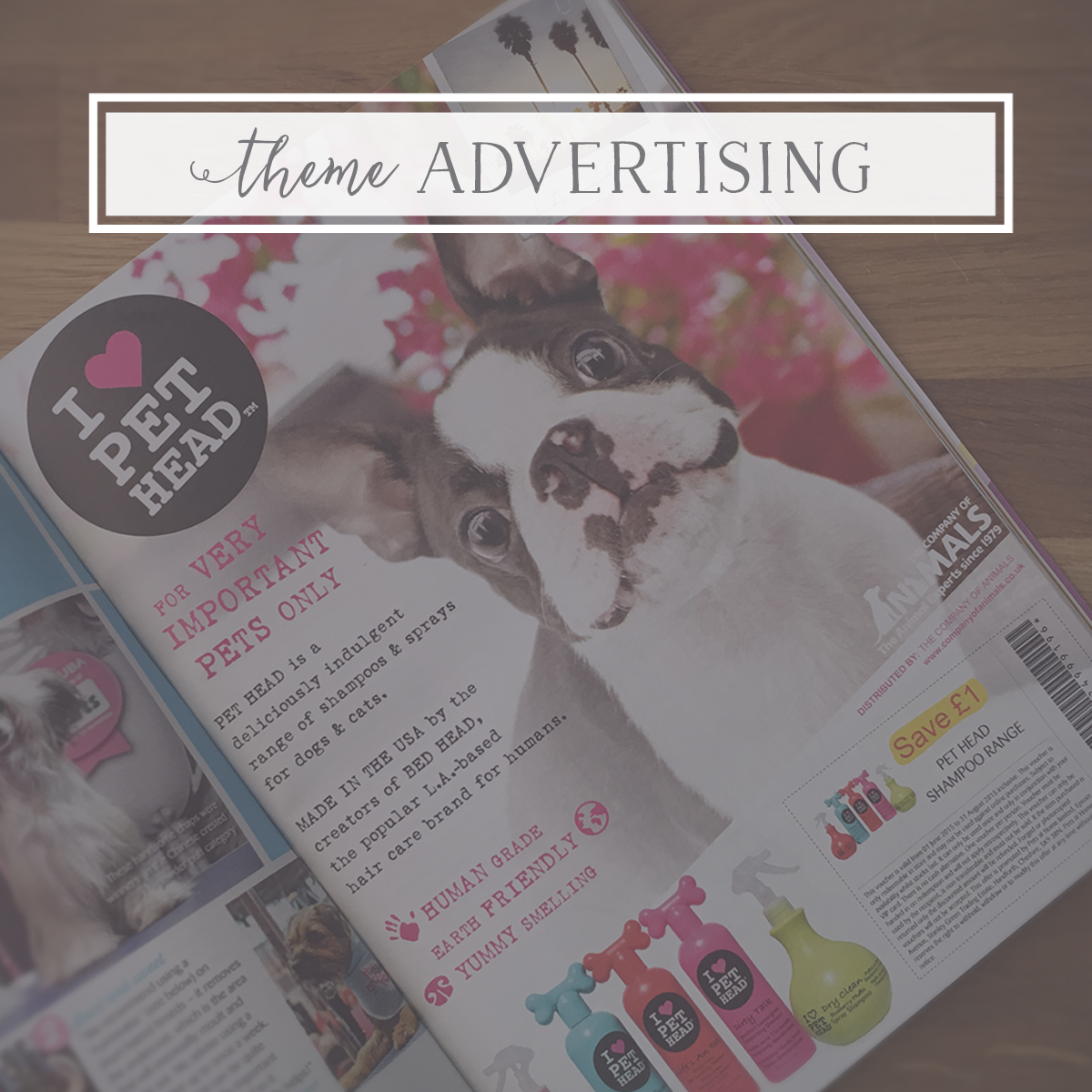 The Secrets to Advertising your pet business
