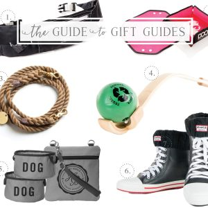 Working with Dog guide to gift guides