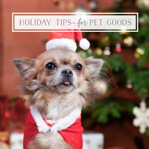 Holiday Tips for Pet Goods with Phil Chang