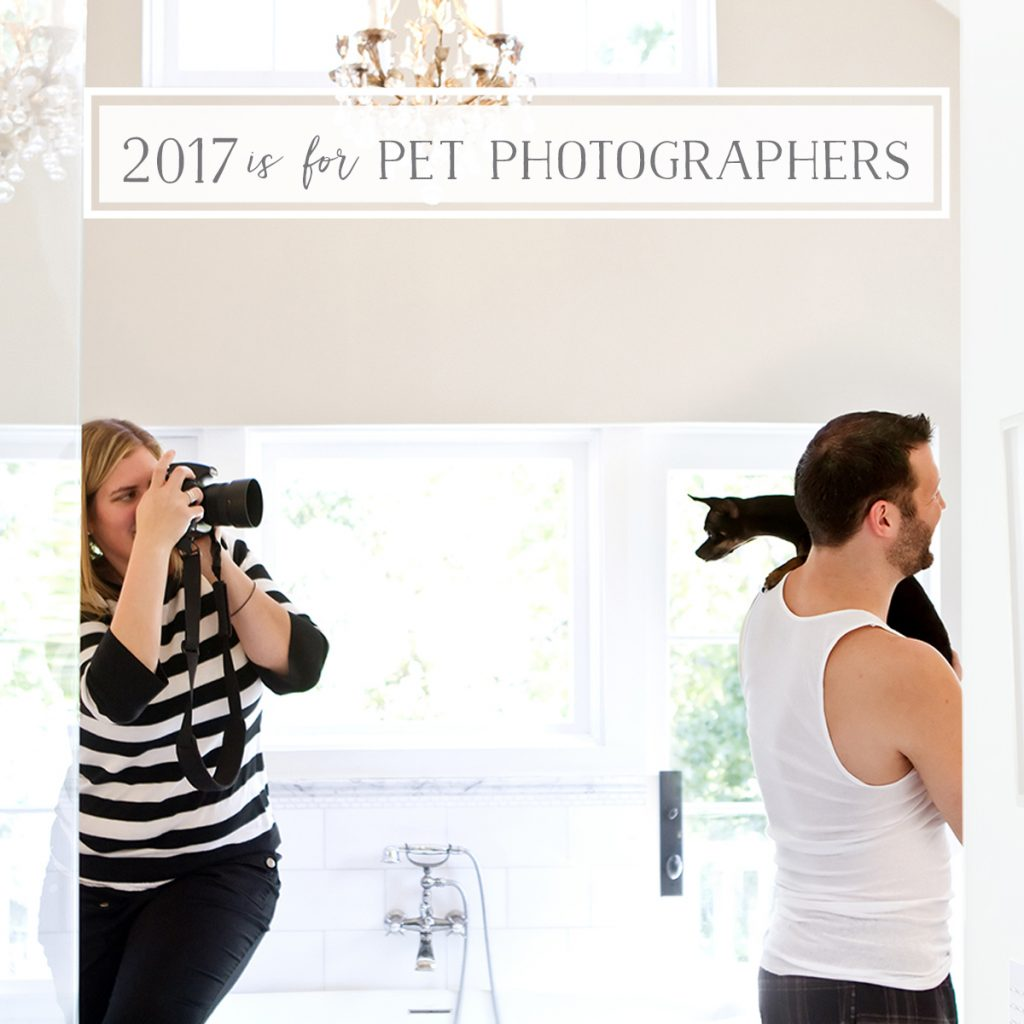 2017 is the year of the Pet Photographer