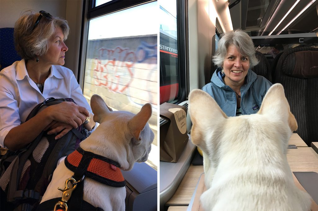 woman and french bulldog on the train in italy
