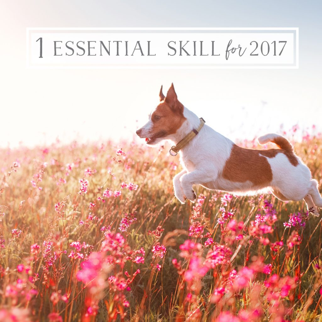 One Essential Skill to Master for 2017