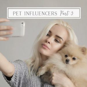 Pet Influencer taking selfie with pomeranian dog