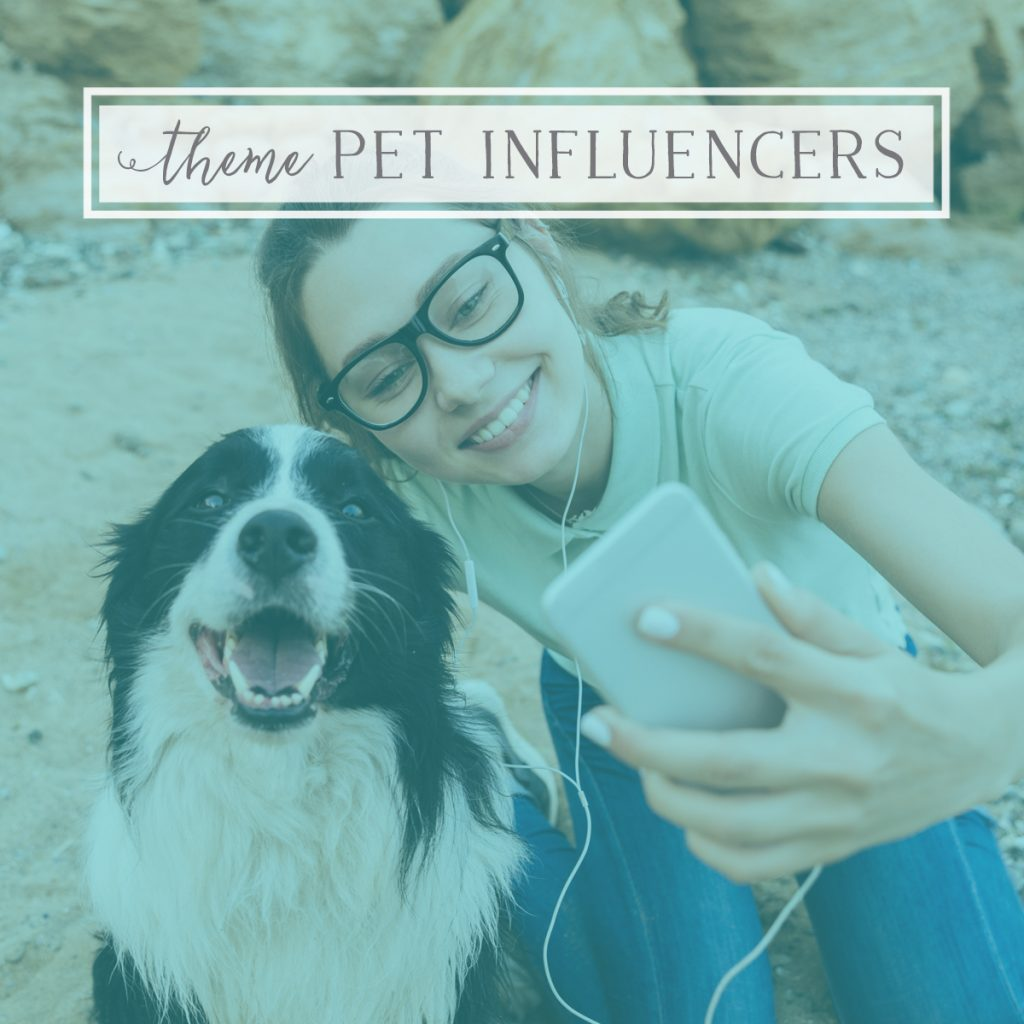 LIVE Q+A: Pet Influencers