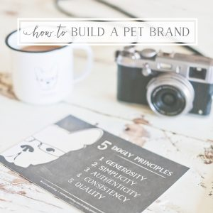how-to_build_a_pet_brand