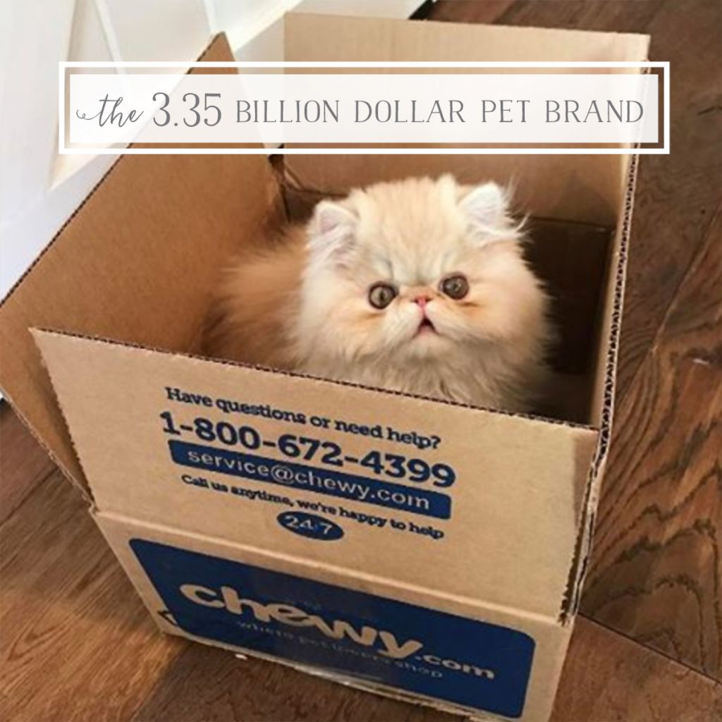 Cat in Chewy.com box