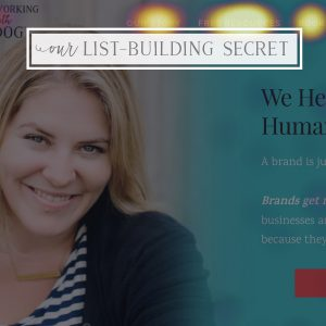 Our Secret Email List-Building Tool