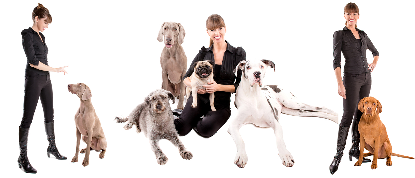 Victoria Stilwell sitting with four dogs