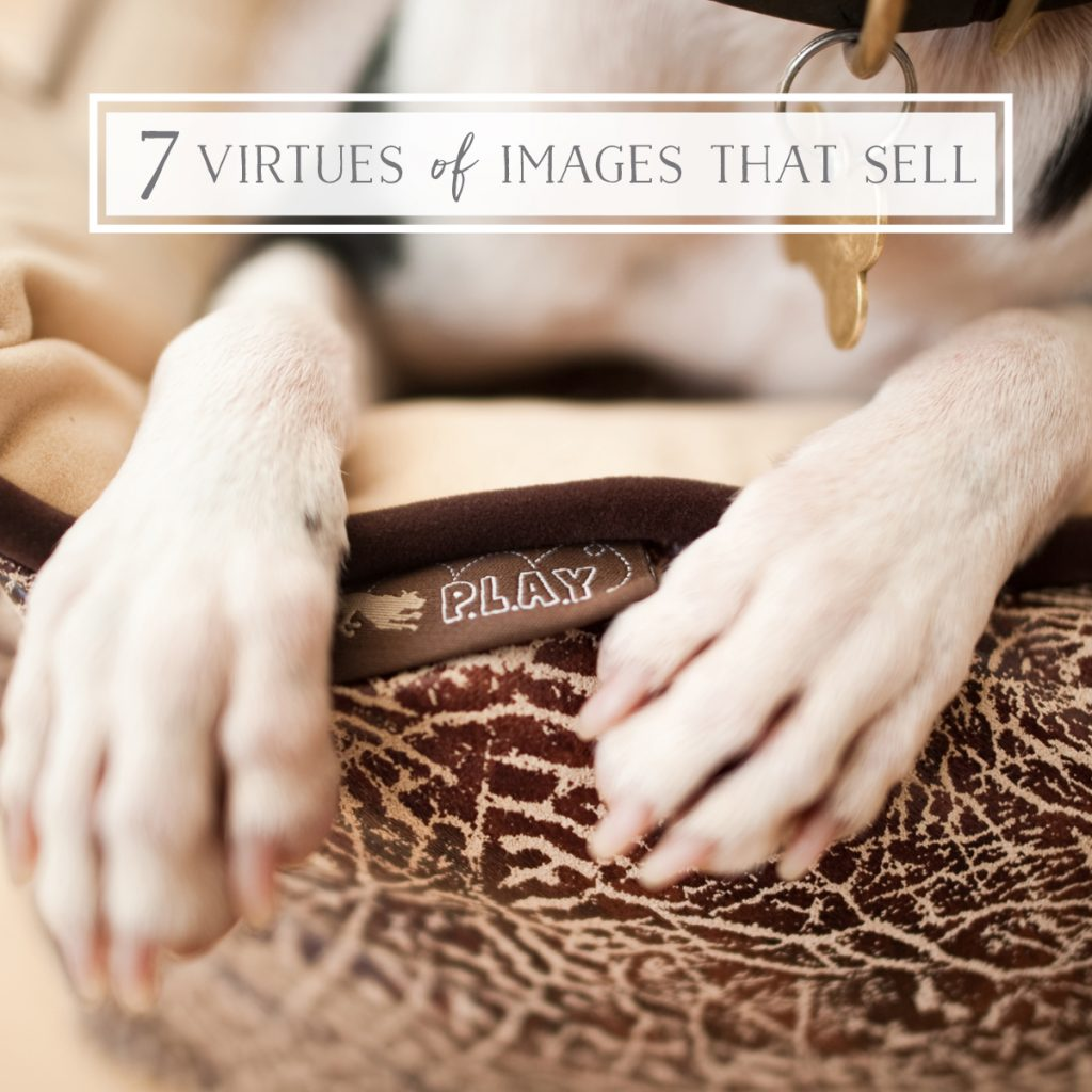 The 7 Virtues of Images that Sell