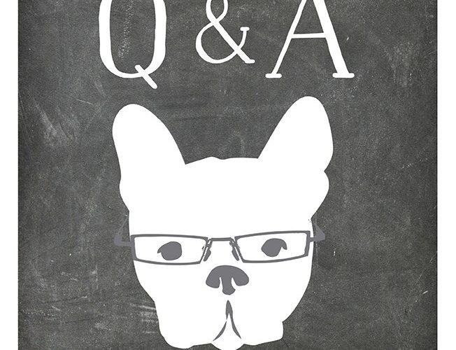 LIVE Q&A: Sales Promotions