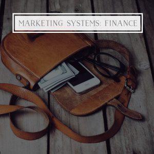 Marketing Systems: Finance