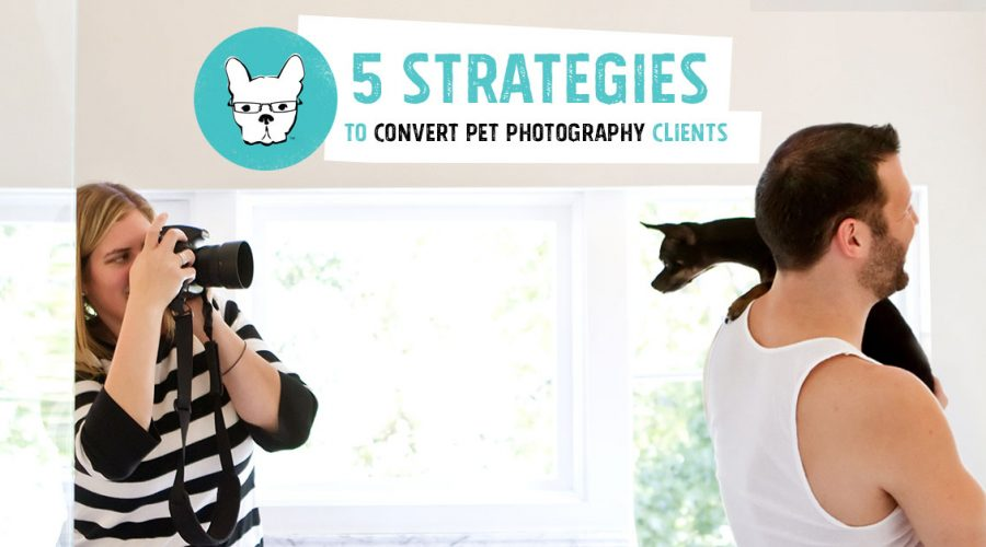 5 Strategies to Convert Pet Photography Clients