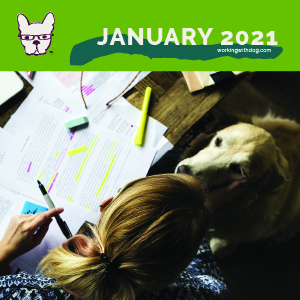 January 2021: The Brain Science of Beating Burnout & Overwhelm