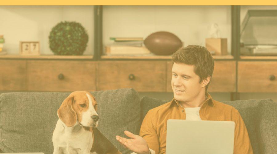 December 2019 Pet Trends & Upcoming Topics
