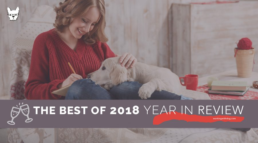 2018: Your Year In Review