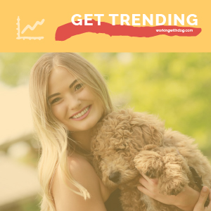 August 2020 Pet Trends & Upcoming Topics
