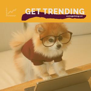 October 2021 Pet Trends & Upcoming Topics