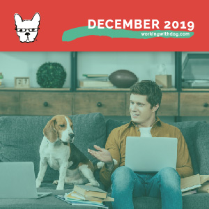 December 2019: Self Assessment & Year In Review