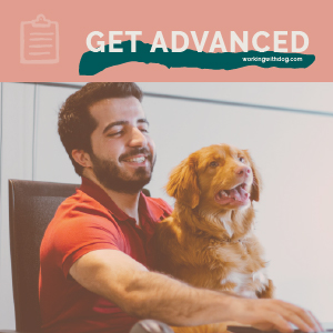 Create Your First Adwords Campaign
