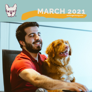 March 2021: Getting Started with Google Adwords