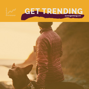 May 2021 Pet Trends & Upcoming Topics
